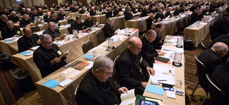Bishops gather in St Louis for spring general assembly